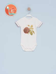 Bebi bodi 0016