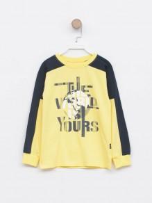 Majica za dečake 2116954 -...