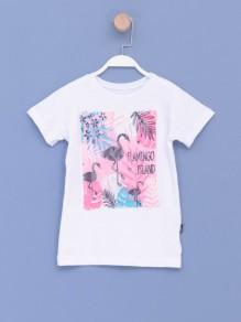 Majica za devojčice 2116988...