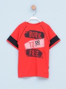 Majica za dečake 2116969 -...