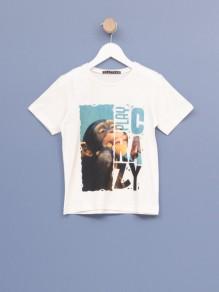 Majica za dečake 291-21
